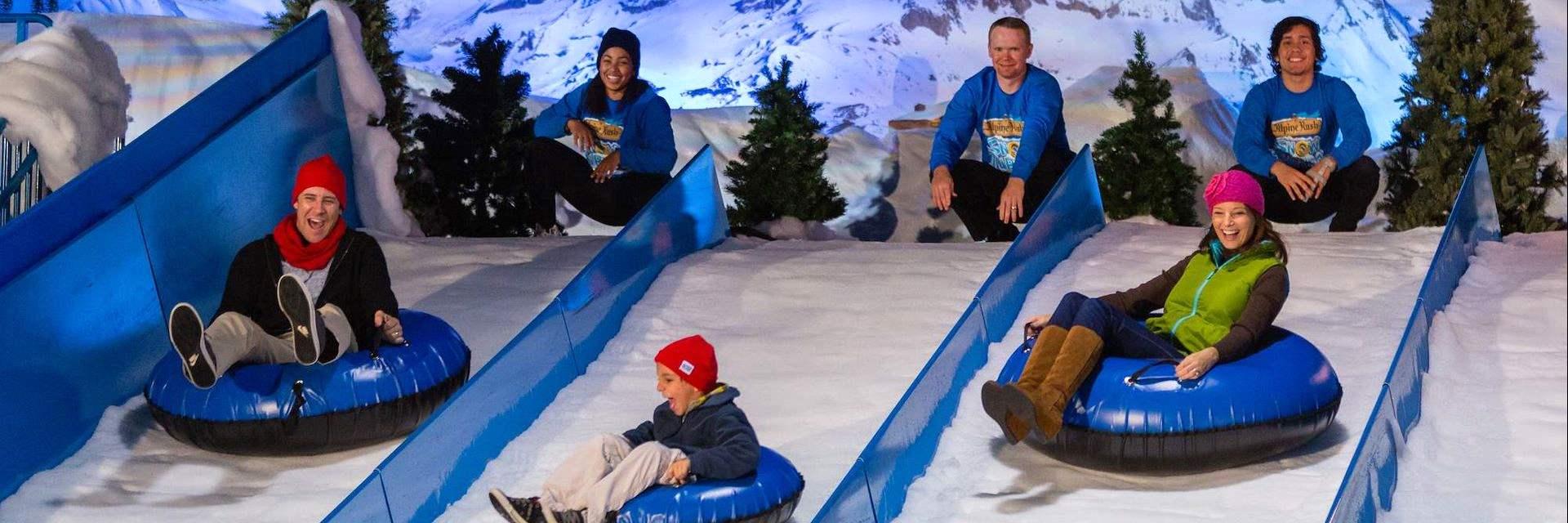 Activities at Christmas Gaylord Palms, New York